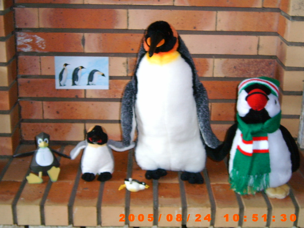 Ma collections de pinguins